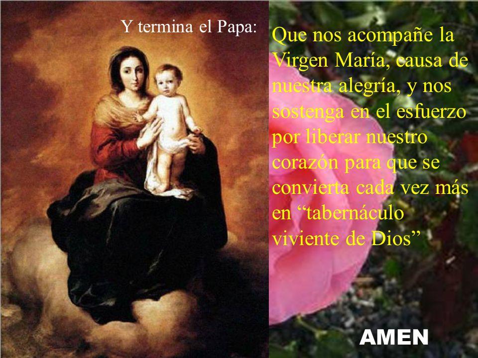 Que nos acompañe la Virgen María, causa de nuestra alegría, y nos sostenga en el esfuerzo por liberar nuestro corazón para que se convierta cada vez más en tabernáculo viviente de Dios