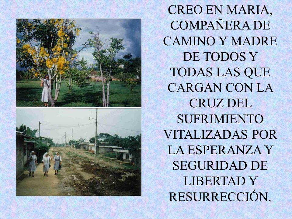 CREO EN MARIA, COMPAÑERA DE CAMINO Y MADRE DE TODOS Y TODAS LAS QUE CARGAN CON LA CRUZ DEL SUFRIMIENTO VITALIZADAS POR LA ESPERANZA Y SEGURIDAD DE LIBERTAD Y RESURRECCIÓN.