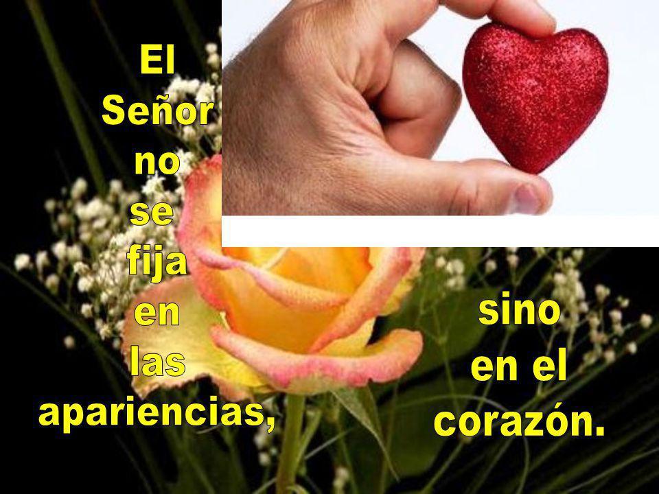 El Señor no se fija en las apariencias, sino en el corazón.