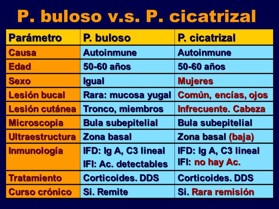P. buloso v.s. P. cicatrizal