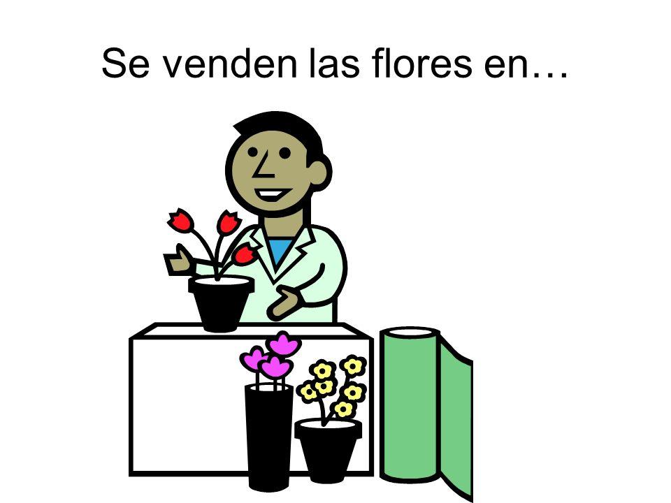 Se venden las flores en…