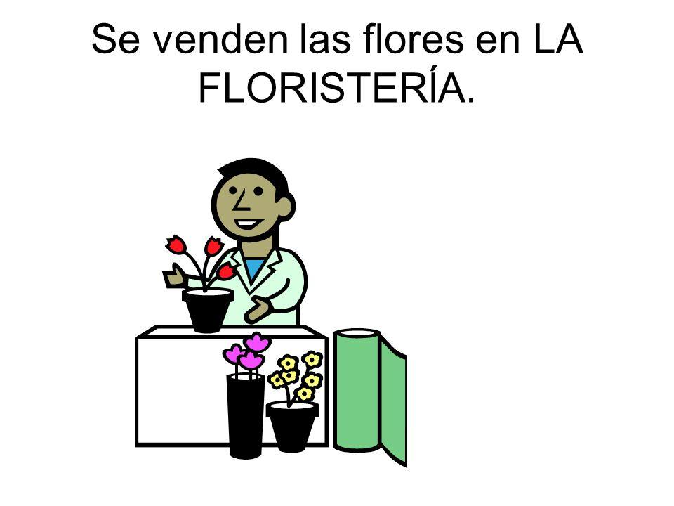 Se venden las flores en LA FLORISTERĺA.