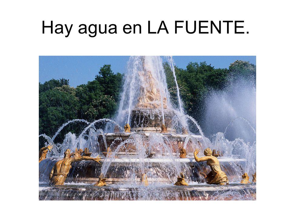 Hay agua en LA FUENTE.