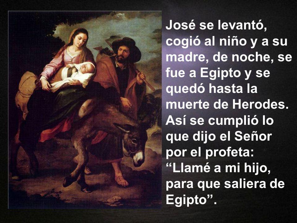 José se levantó, cogió al niño y a su madre, de noche, se fue a Egipto y se quedó hasta la muerte de Herodes.