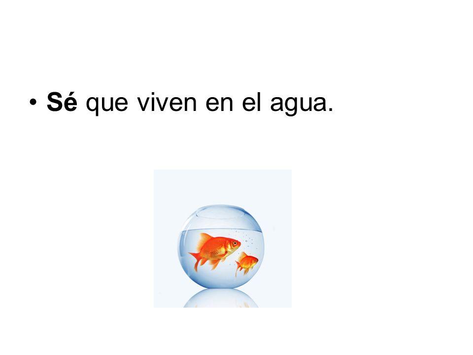 Sé que viven en el agua.