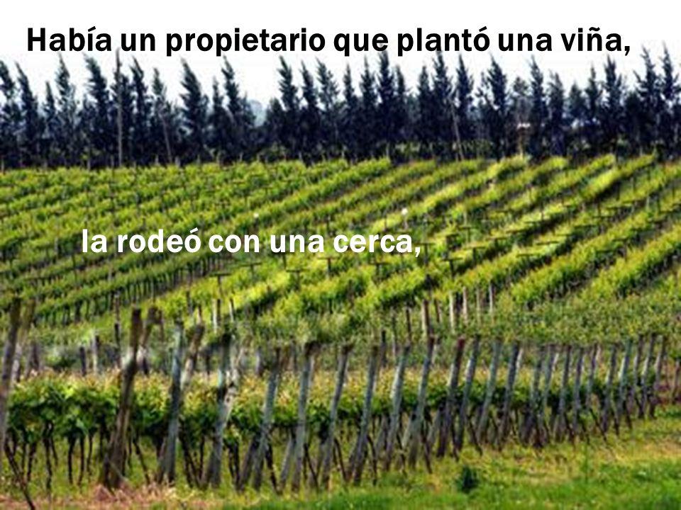 Había un propietario que plantó una viña,