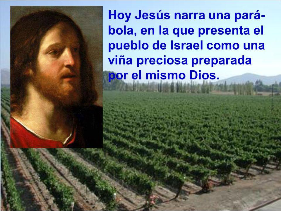 Hoy Jesús narra una pará-bola, en la que presenta el pueblo de Israel como una viña preciosa preparada por el mismo Dios.