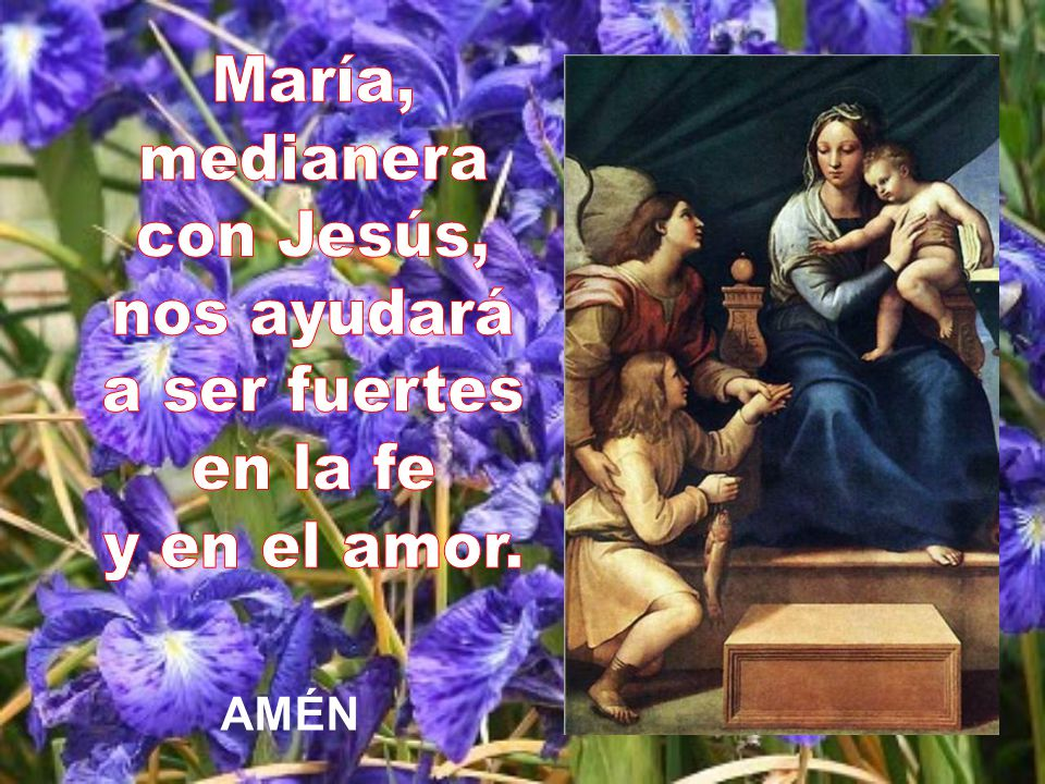 María, medianera con Jesús, nos ayudará a ser fuertes en la fe