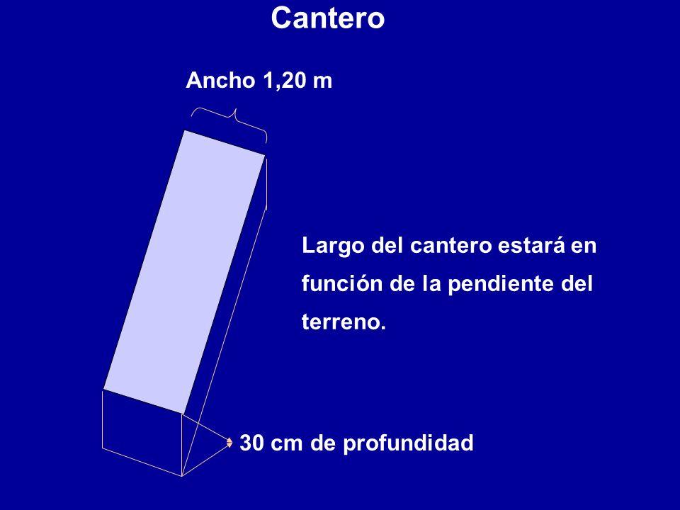 Cantero Ancho 1,20 m. Largo del cantero estará en función de la pendiente del terreno.