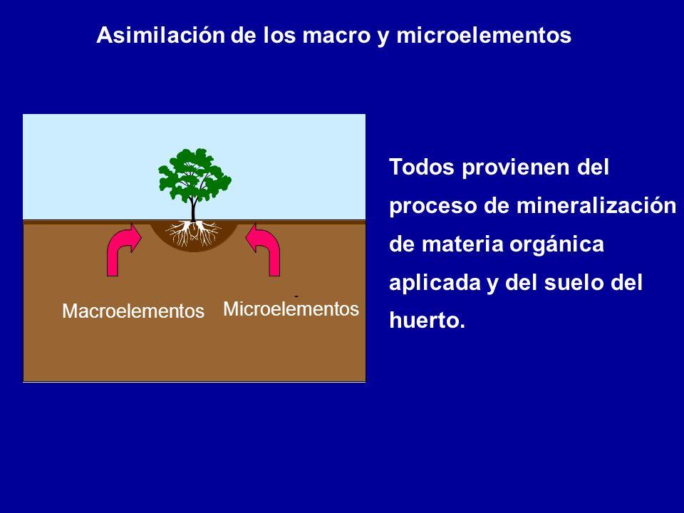 Asimilación de los macro y microelementos
