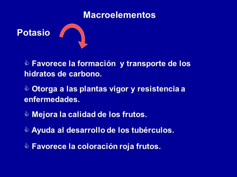 Macroelementos Potasio