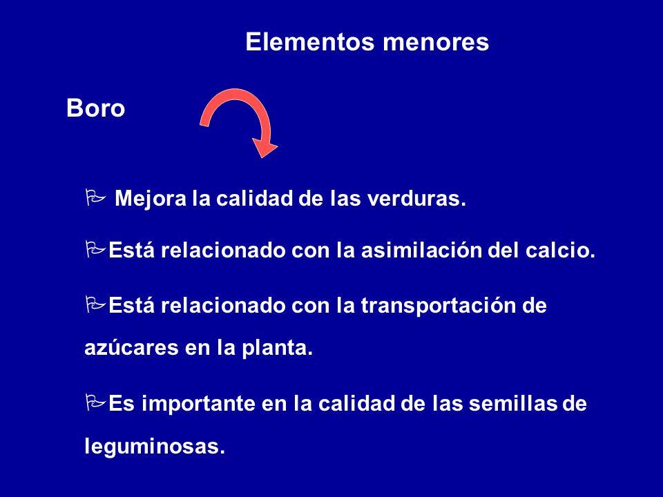 Elementos menores Boro