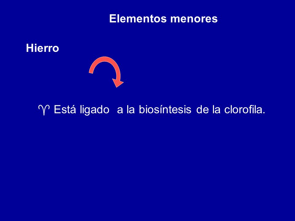 Elementos menores Hierro Está ligado a la biosíntesis de la clorofila.