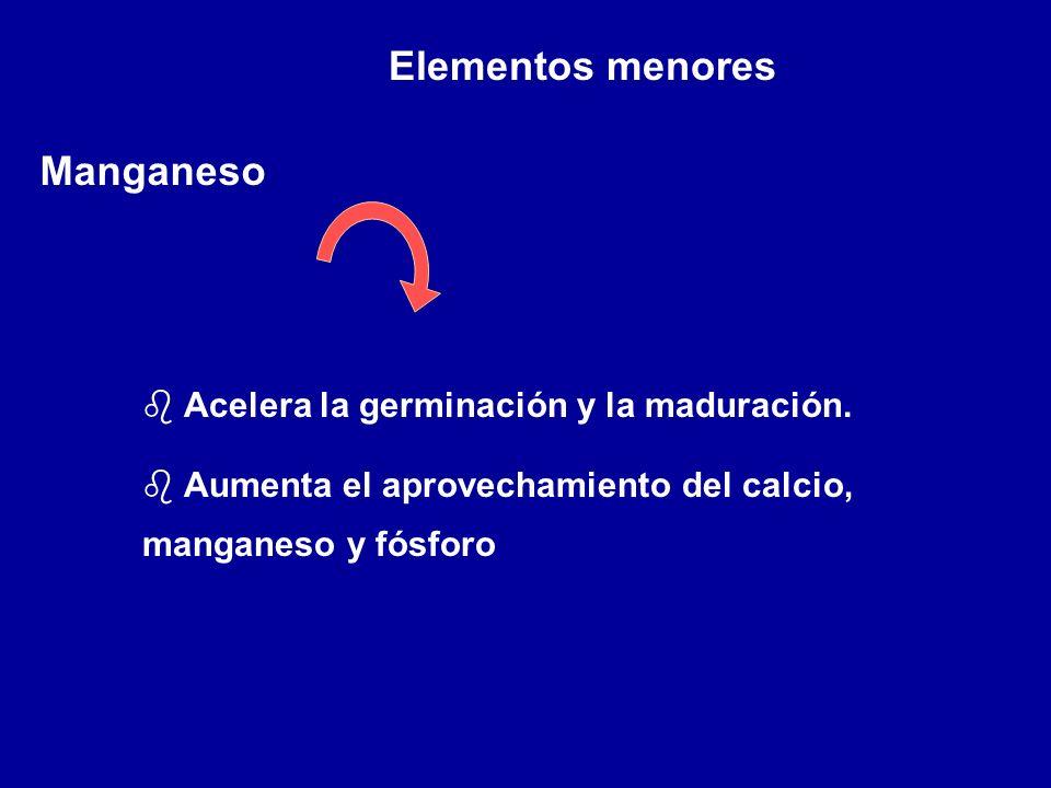 Elementos menores Manganeso