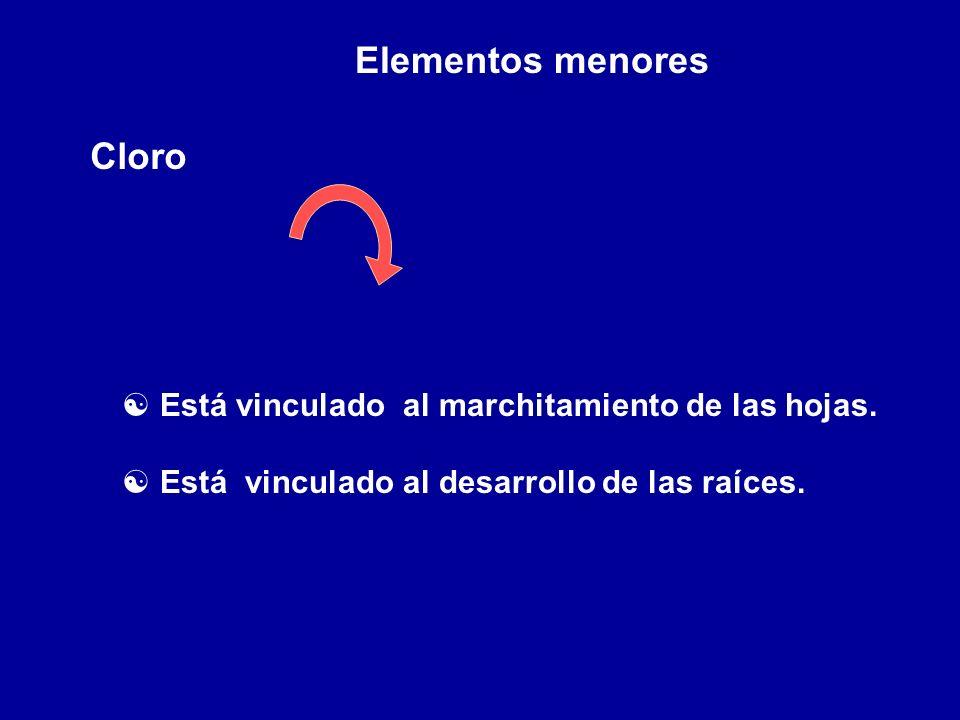 Elementos menores Cloro
