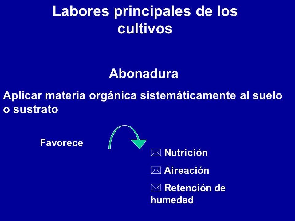 Labores principales de los cultivos