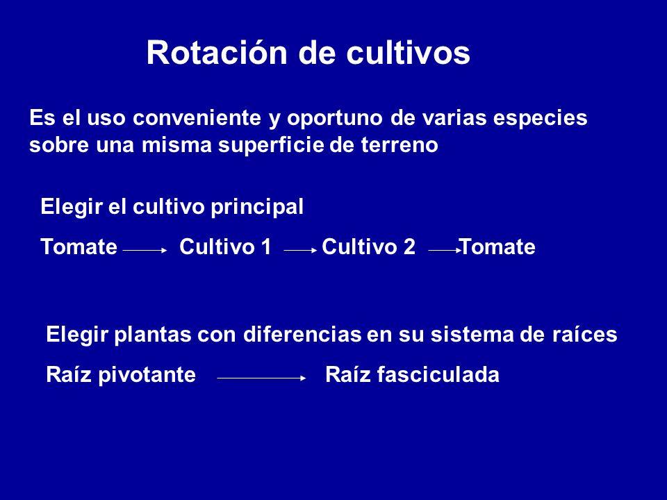 Rotación de cultivosEs el uso conveniente y oportuno de varias especies sobre una misma superficie de terreno.