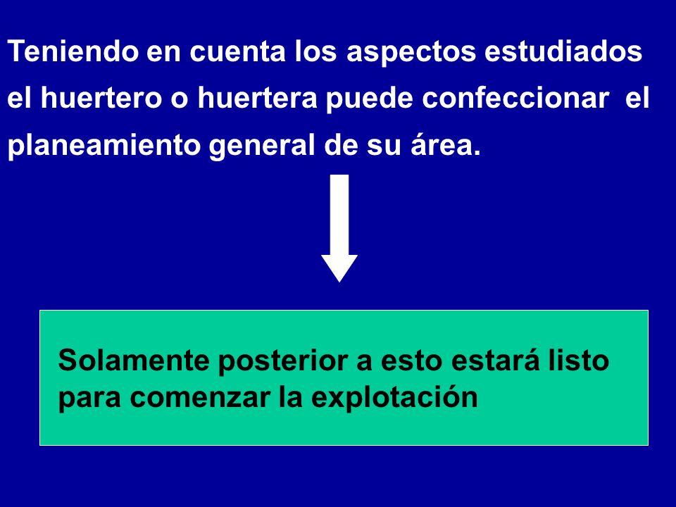 Teniendo en cuenta los aspectos estudiados el huertero o huertera puede confeccionar el planeamiento general de su área.