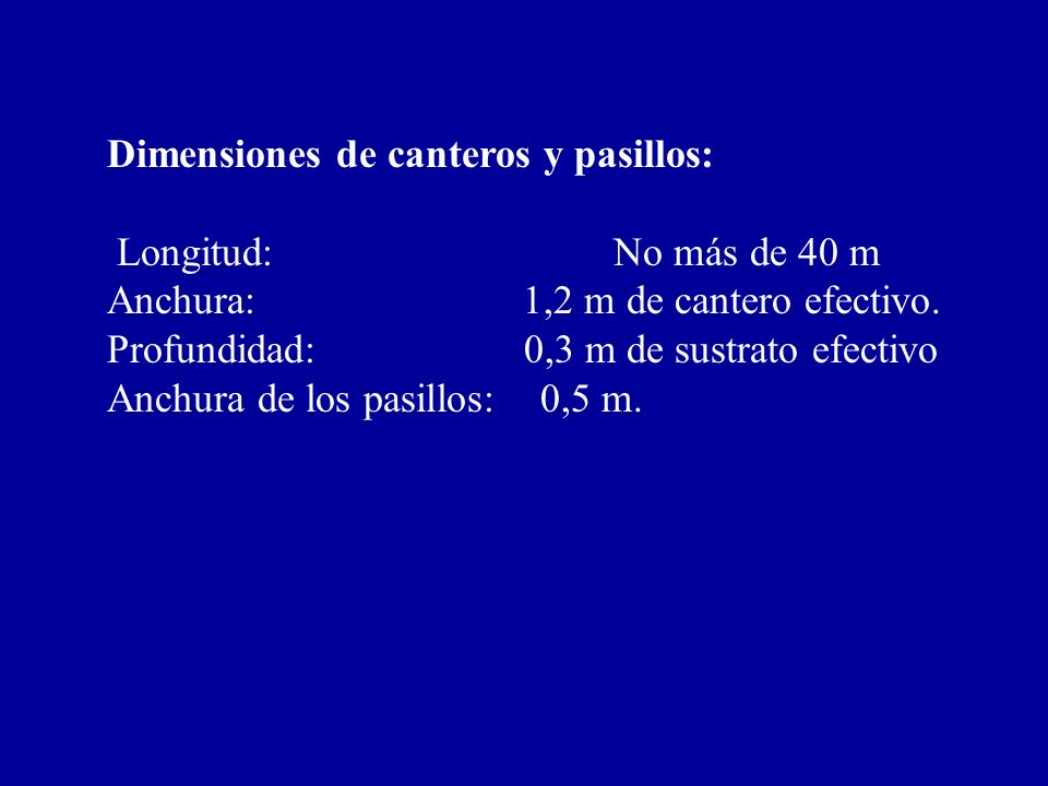 Dimensiones de canteros y pasillos: