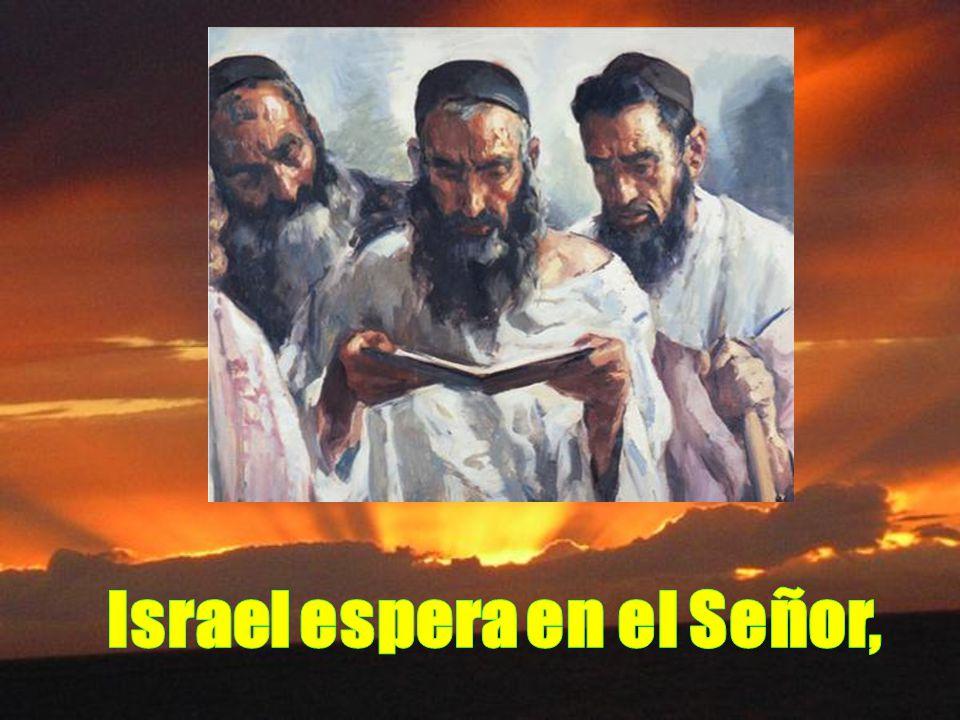 Israel espera en el Señor,