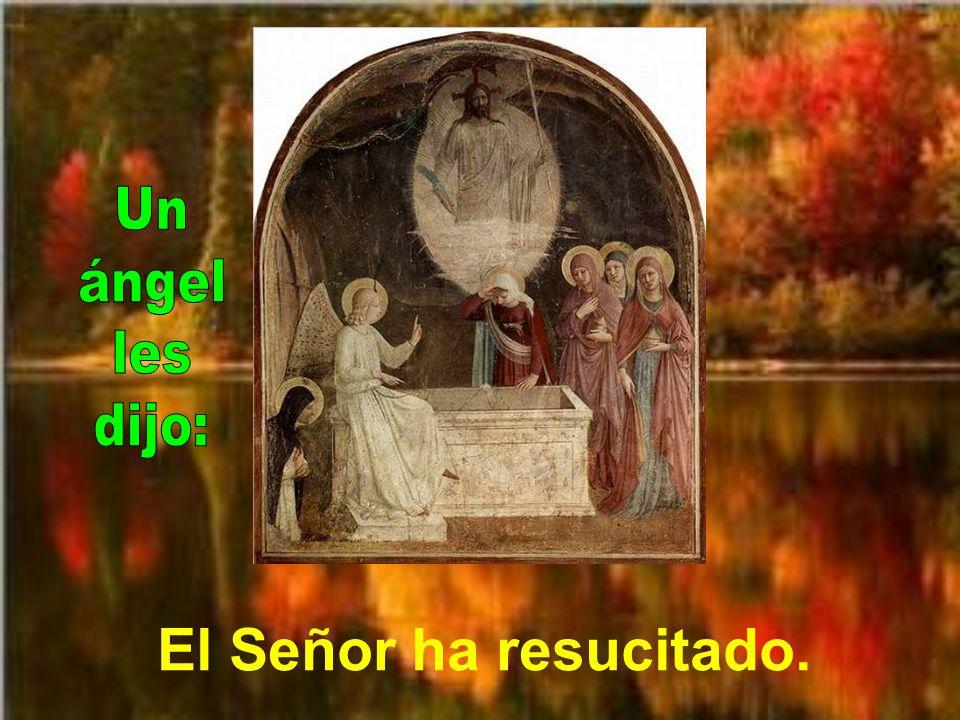 Un ángel les dijo: El Señor ha resucitado.