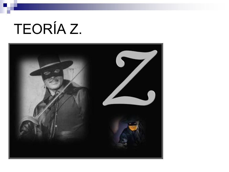 TEORÍA Z.