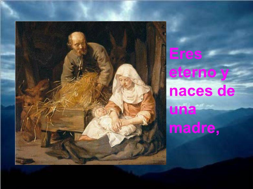 Eres eterno y naces de una madre,