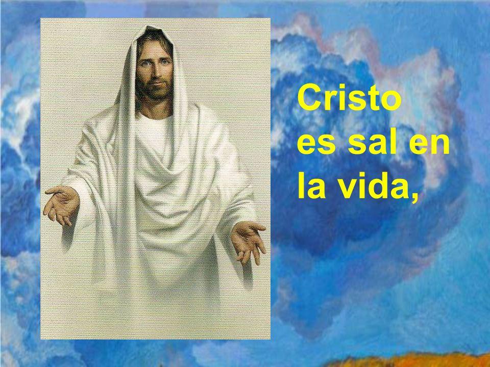 Cristo es sal en la vida,