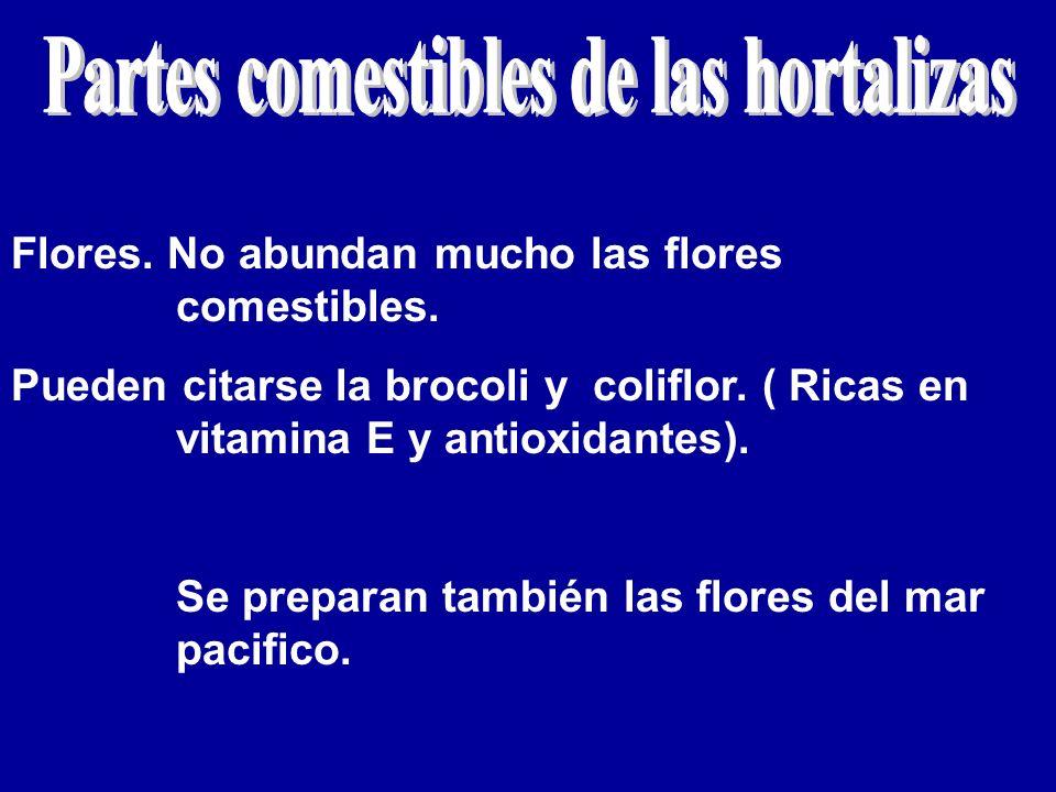 Partes comestibles de las hortalizas