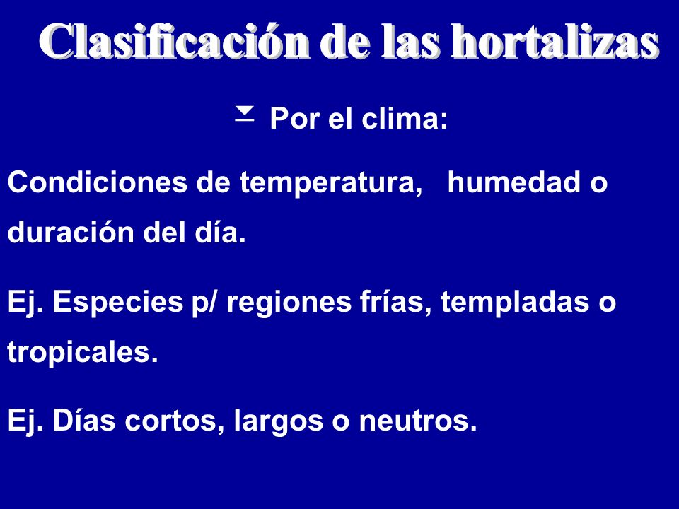 Clasificacion de las hortalizas pictures to pin on pinterest for Horticultura definicion