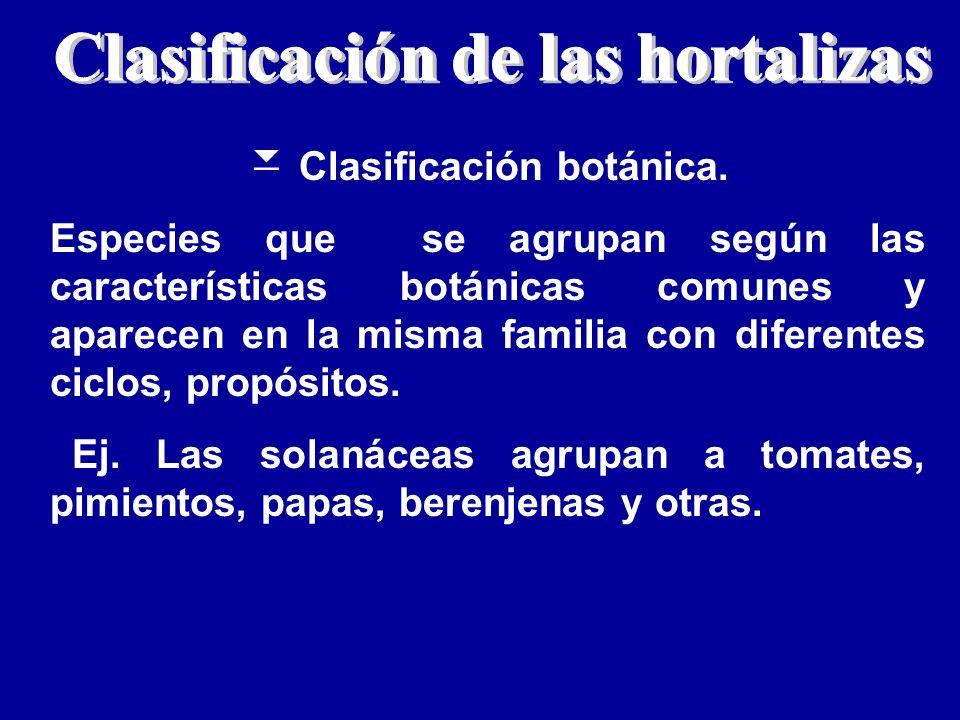Clasificación de las hortalizas Clasificación botánica.