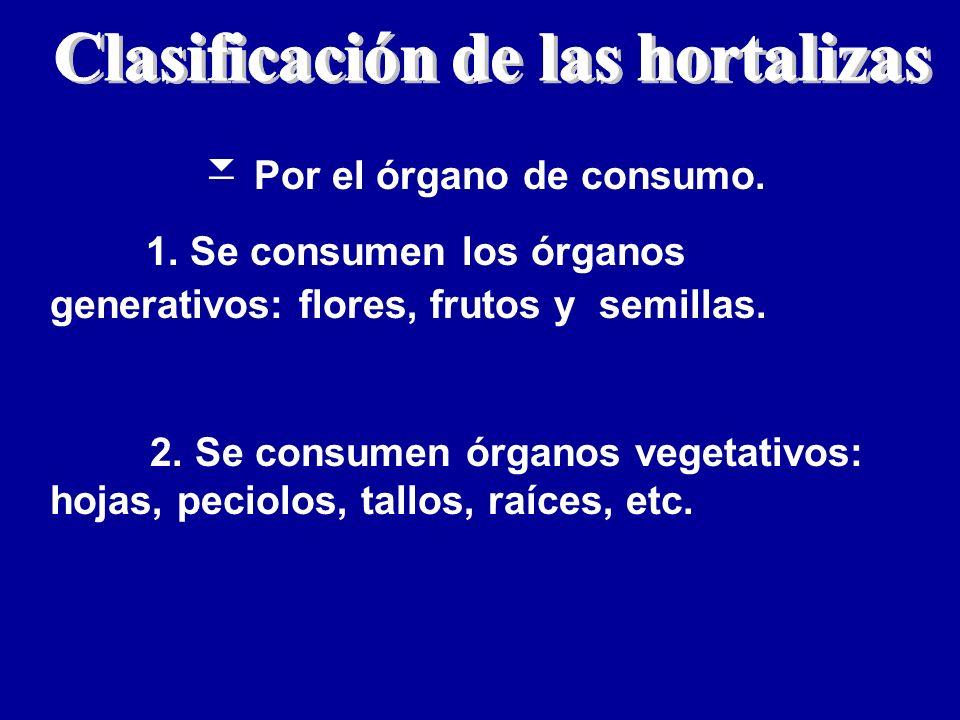 Clasificación de las hortalizas Por el órgano de consumo.