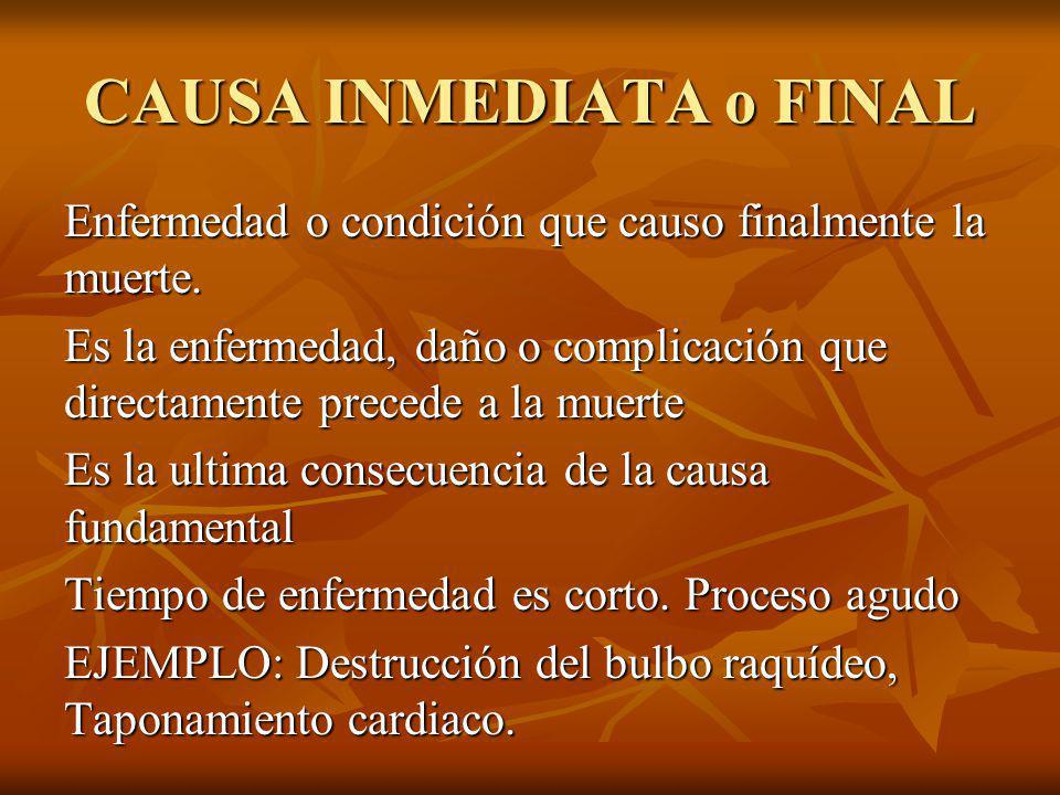 CAUSA INMEDIATA o FINAL
