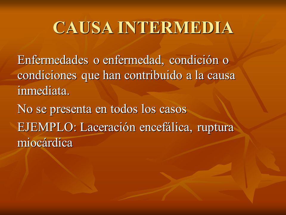 CAUSA INTERMEDIA