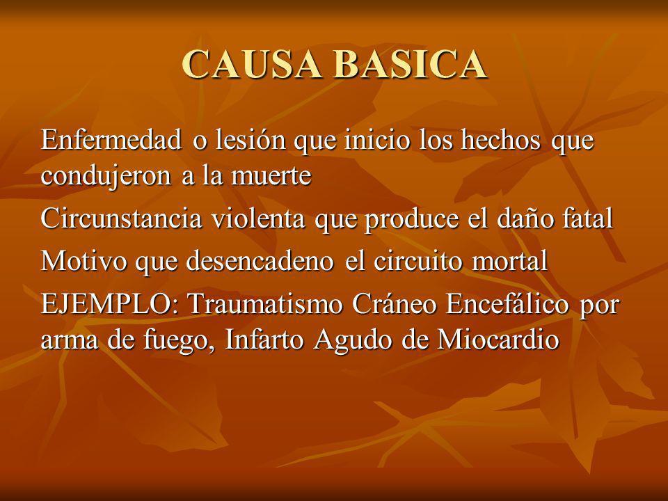 CAUSA BASICA