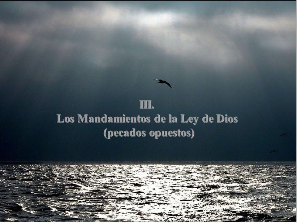 III. Los Mandamientos de la Ley de Dios (pecados opuestos)