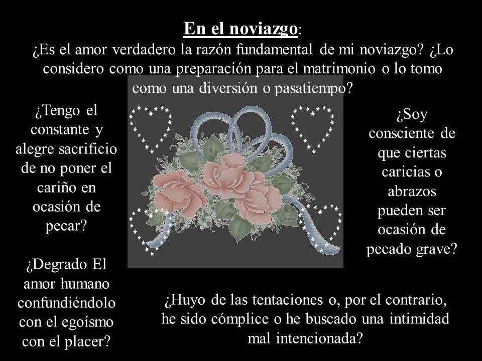 En el noviazgo: ¿Es el amor verdadero la razón fundamental de mi noviazgo ¿Lo considero como una preparación para el matrimonio o lo tomo como una diversión o pasatiempo