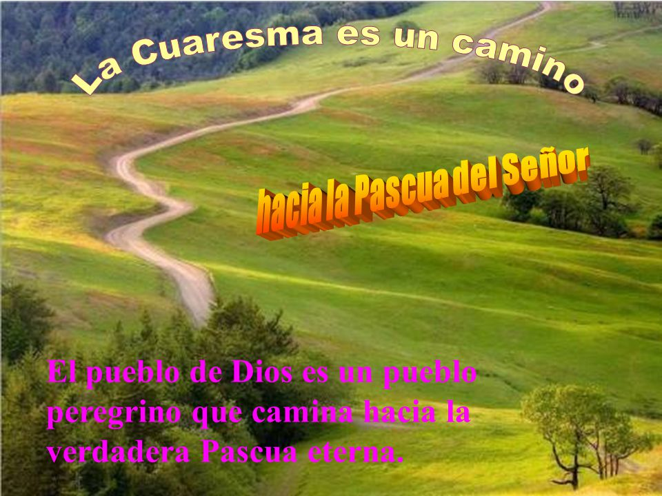 La Cuaresma es un camino hacia la Pascua del Señor