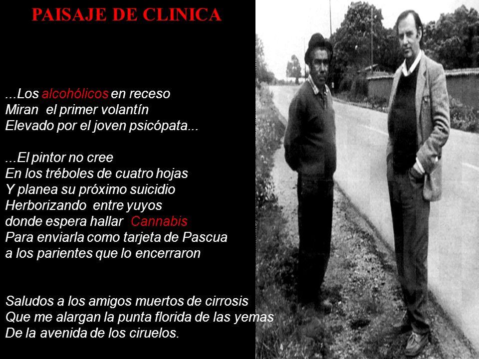 PAISAJE DE CLINICA ...Los alcohólicos en receso