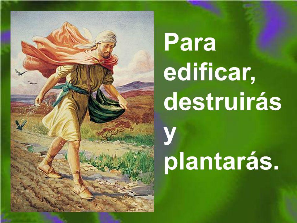Para edificar, destruirás y plantarás.