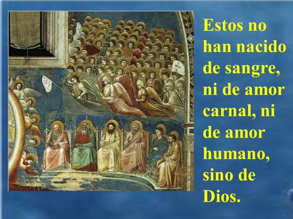 Estos no han nacido de sangre, ni de amor carnal, ni de amor humano, sino de Dios.