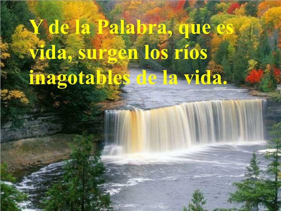 Y de la Palabra, que es vida, surgen los ríos inagotables de la vida.