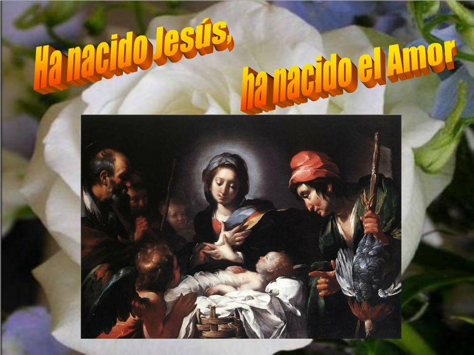 Ha nacido Jesús, ha nacido el Amor
