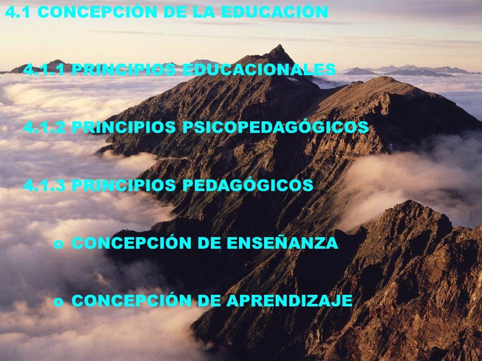 4.1 CONCEPCIÓN DE LA EDUCACIÓN