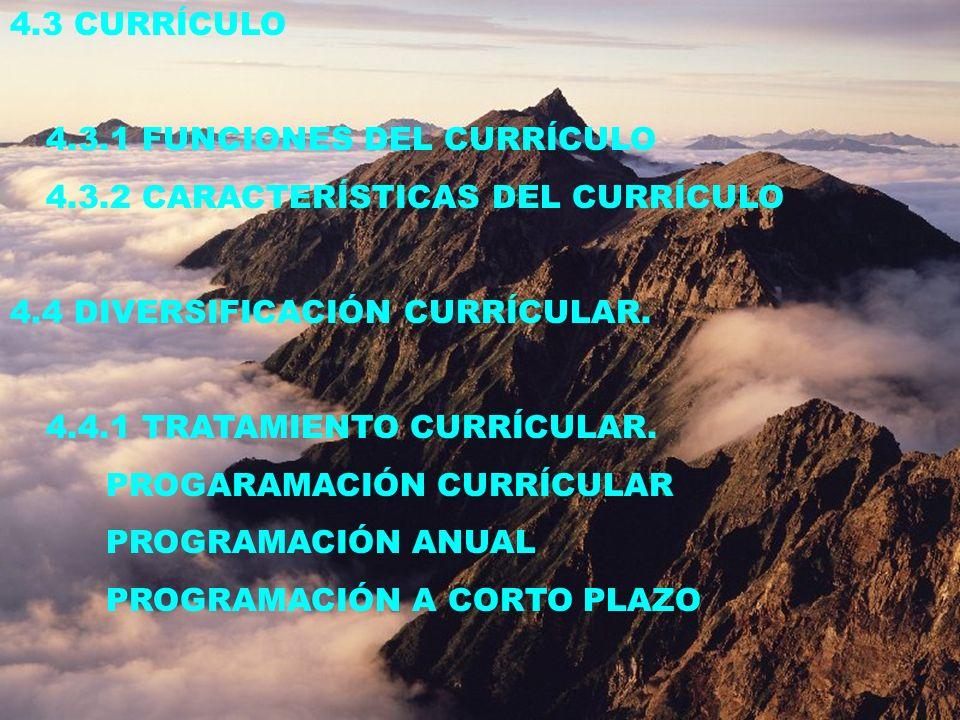 4.3 CURRÍCULO 4.3.1 FUNCIONES DEL CURRÍCULO. 4.3.2 CARACTERÍSTICAS DEL CURRÍCULO. 4.4 DIVERSIFICACIÓN CURRÍCULAR.