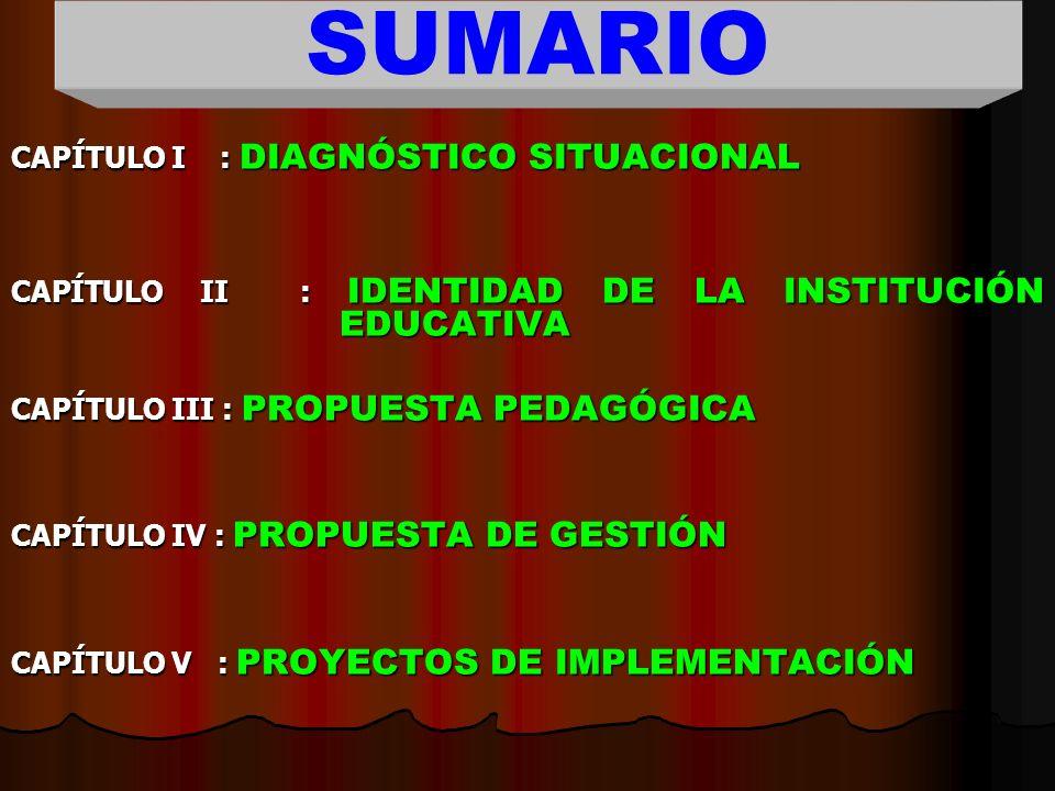 SUMARIO CAPÍTULO I : DIAGNÓSTICO SITUACIONAL