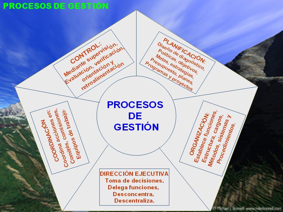 PROCESOS DE GESTIÓN