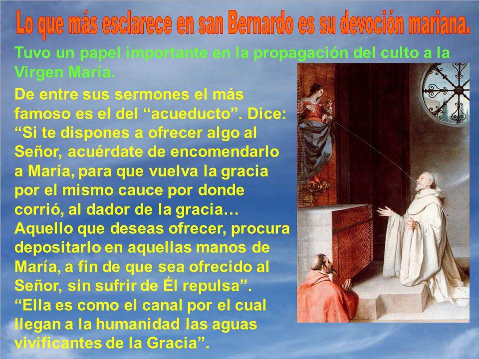 Lo que más esclarece en san Bernardo es su devoción mariana.