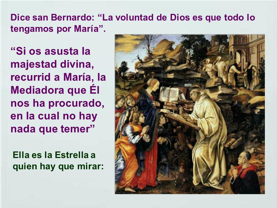 Dice san Bernardo: La voluntad de Dios es que todo lo tengamos por María .