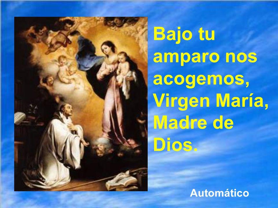 Bajo tu amparo nos acogemos, Virgen María, Madre de Dios.